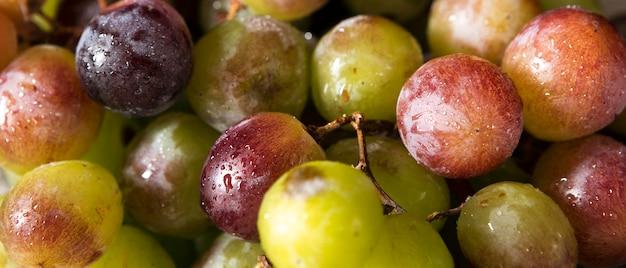 Alto ângulo de muitas uvas de outono