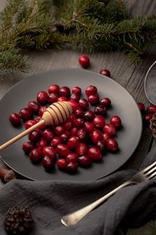 Alto ângulo de prato com cranberries e dipper mel