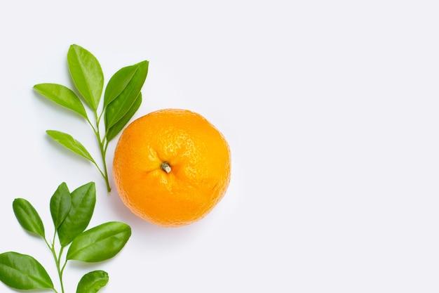 Alto teor de vitamina c, suculento e doce. fruta fresca de laranja com folhas verdes em um espaço em branco