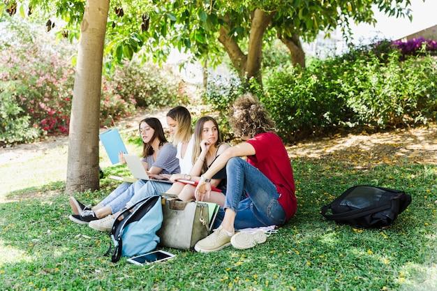 Alunos estudando e conversando no parque