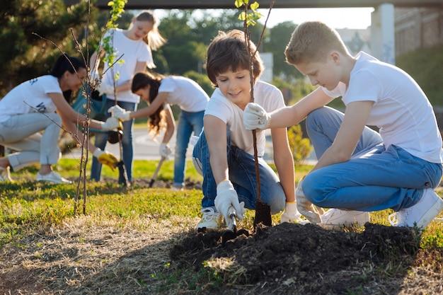 Alunos plantando árvores frutíferas jovens