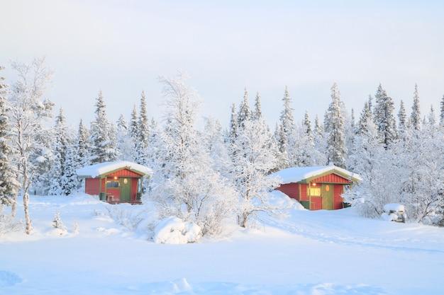 Amanhecer, em, paisagem inverno, suécia