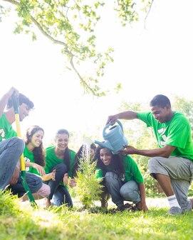Ambientalistas molhando a planta