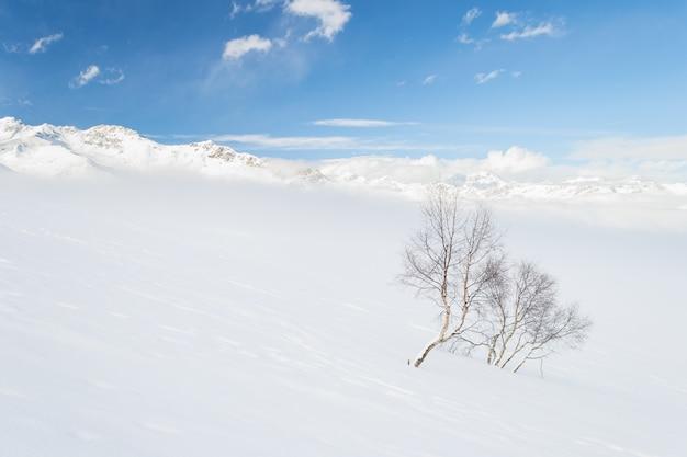 Ambiente alpino sincero