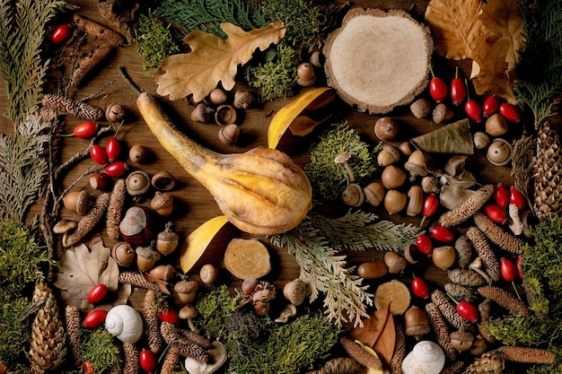 Ambiente de conto de fadas forma de pássaro voador outonal mágico de abóbora seca, folhas de outono, musgo, cones de abeto. rosa mosqueta sobre fundo de madeira. design de tendência de cartão postal ou papel de parede