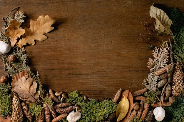 Ambiente de conto de fadas, fundo mágico de floresta outonal