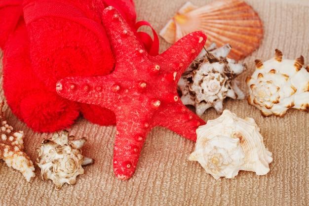 Ambiente de tratamento de spa marinho com estrela de peixe vermelha e conchas