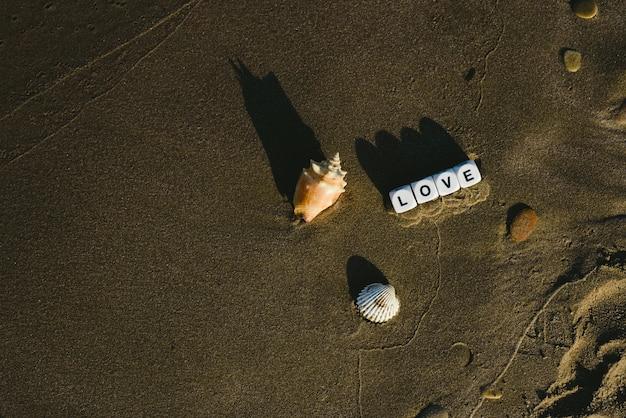 Ame o conceito feito com os dados com letras na areia molhada de uma praia e de uns motriz marinhos.
