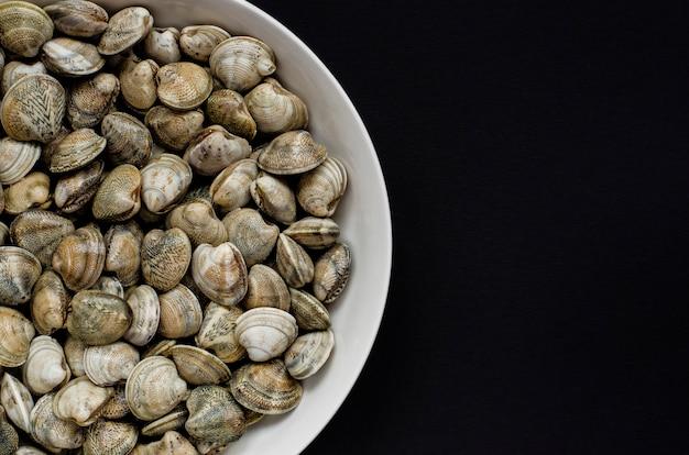 Amêijoas, moluscos ou moluscos em uma tigela branca. vista do topo. copyspace