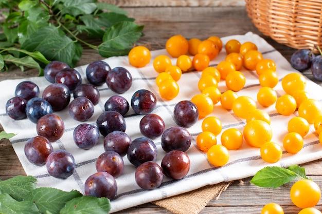 Ameixa fresca, ameixa cereja seca em um guardanapo antes de congelar. bagas congeladas. armazenamento de alimentos