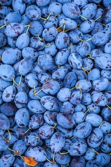 Ameixas no mercado. comida de ameixas de frutas. texturas de ameixas azuis frescas.