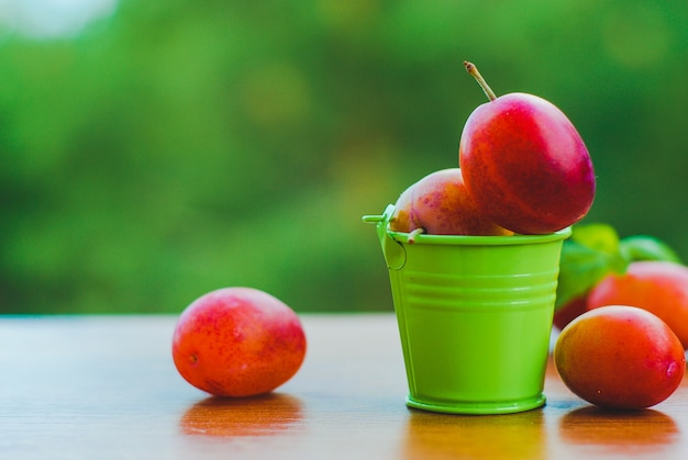 Ameixas orgânicas frescas no pequeno balde