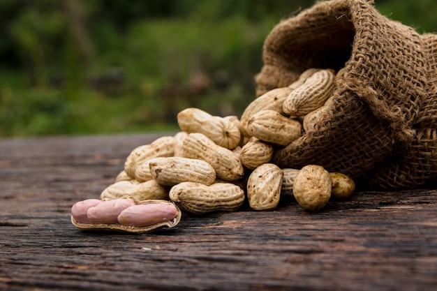 Amendoim em conchas no saco com amendoim fresco em madeira no fundo da natureza