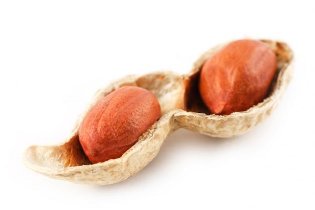 Amendoim em uma espiga descascada, dois grãos isolados no fundo branco