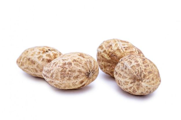 Amendoins isolados com casca em poucas palavras