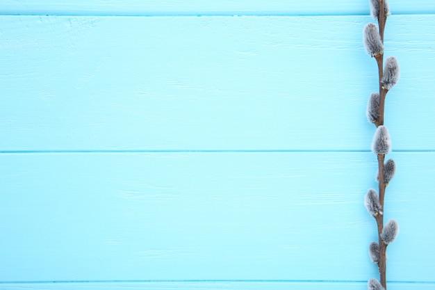 Amentilhos de salgueiro em um fundo azul de madeira com espaço de cópia, páscoa