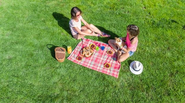 Amigas com cachorro fazendo piquenique no parque, meninas sentadas na grama e comer refeições saudáveis ao ar livre, vista aérea de cima