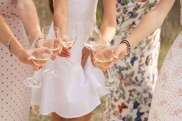 Amigas desfruta de um piquenique de verão e levanta copos com vinho