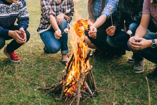 Amigos, assar marshmallows sobre o fogo