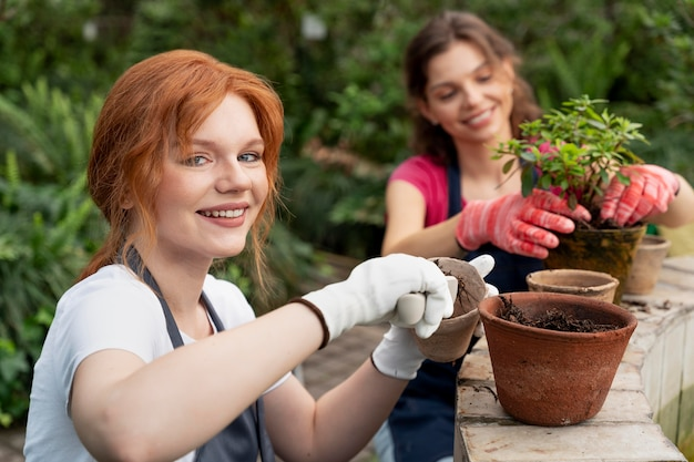Amigos cuidando de suas plantas em uma estufa