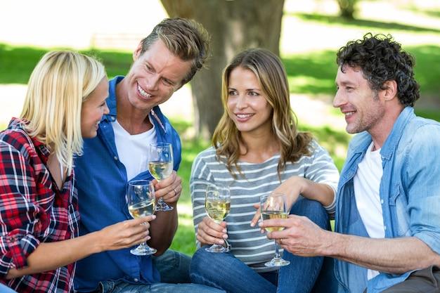 Amigos fazendo um piquenique com vinho