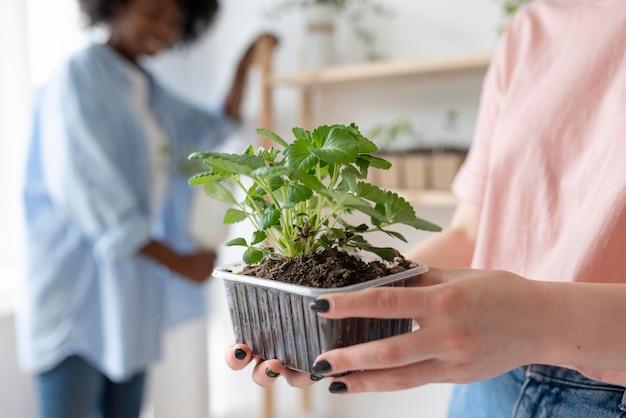Amigos tendo um jardim sustentável dentro de casa