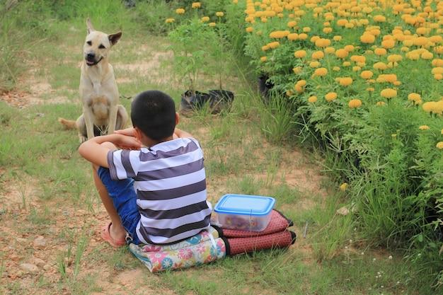 Amizade entre um menino e um cachorro vadio no jardim de flores.