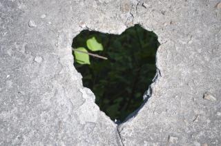 Amor coração