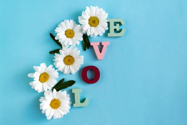 Amor de inscrição de letras de madeira e flores de camomila com folhas verdes no azul