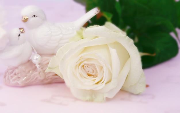 Amor gentil fundo desfocado estatuetas de pombos de rosa branca com foco seletivo dia das mães