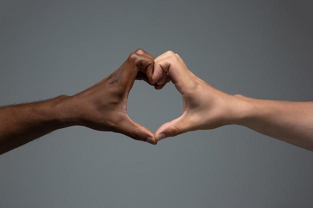 Amor, gesto de coração. tolerância racial. respeite a unidade social. mãos africanas e caucasianas, gesticulando no fundo cinza do estúdio. direitos humanos, amizade, conceito de unidade internacional. unidade inter-racial.