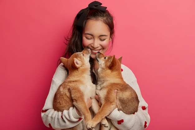 Amor, ternura, sentimento caloroso e compreensão sem palavras. alegre mulher coreana recebe beijo de dois filhotes com pedigree, não consegue imaginar a vida sem animais de estimação, se diverte com os melhores amigos animais.