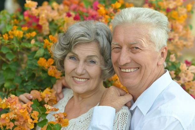 Amoroso e feliz casal de idosos em resort tropical