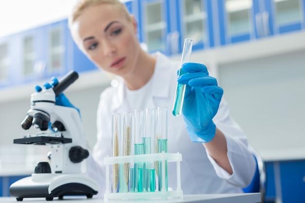 Amostras de laboratório. foco seletivo de tubos de ensaio com reagentes azuis sendo usados para pesquisas científicas no laboratório médico