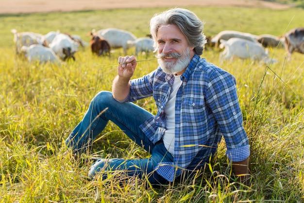 Ancião de alto ângulo com cabras na fazenda