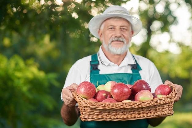 Ancião no chapéu do fazendeiro que guarda a cesta com maçãs.