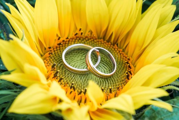 Anéis de casamento dentro de girassol