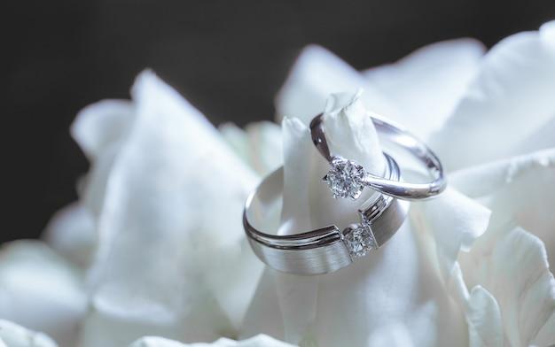 Anéis de casamento do casal