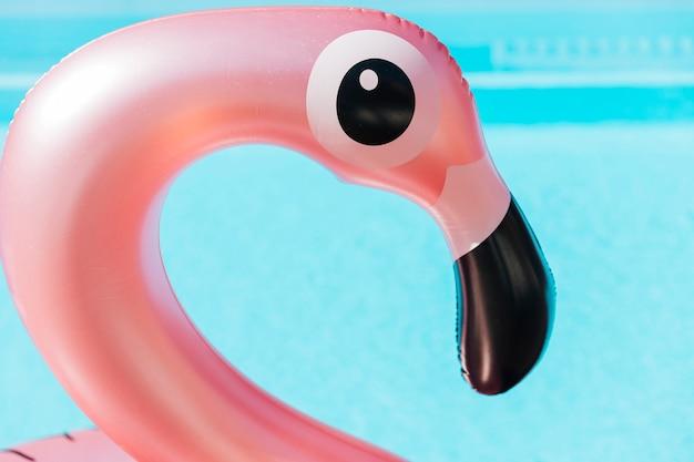 Anel de natação flamingo close-up