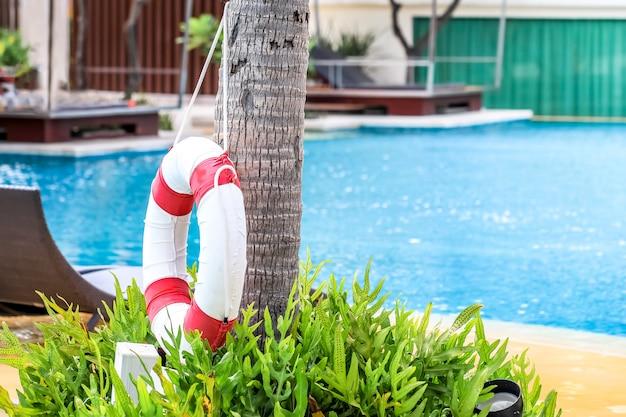 Anel de vida de segurança de piscina na árvore