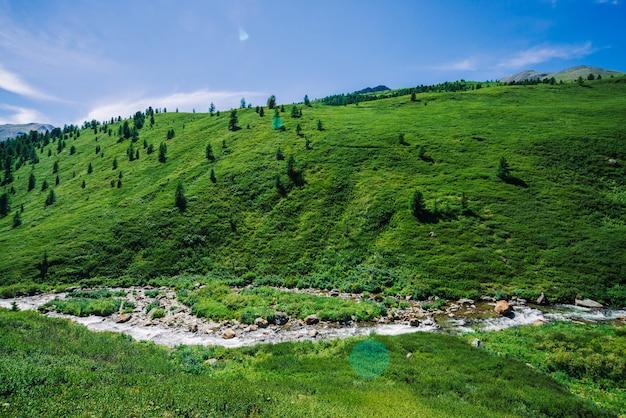 Angra da montanha no vale verde entre a vegetação rica das montanhas no dia ensolarado. volume de água rápido da geleira sob o céu azul claro. gigantes montanhas nevadas atrás da colina. paisagem vívida de natureza majestosa.