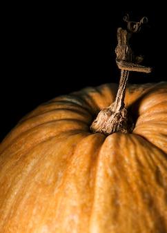 Ângulo alto de abóbora de outono