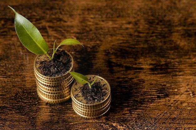 Ângulo alto de duas pilhas de moedas com plantas e espaço de cópia