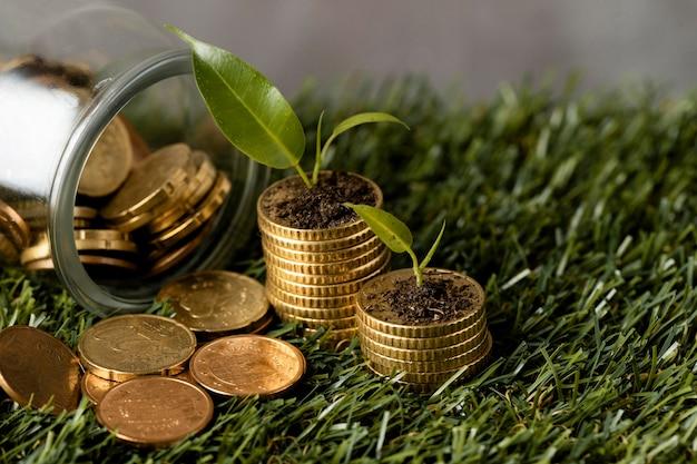 Ângulo alto de duas pilhas de moedas na grama com jarras e plantas