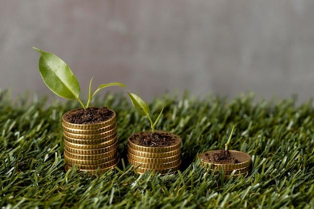 Ângulo alto de três pilhas de moedas na grama com plantas e terra