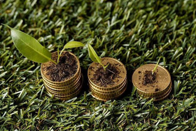 Ângulo alto de três pilhas de moedas na grama com terra e plantas