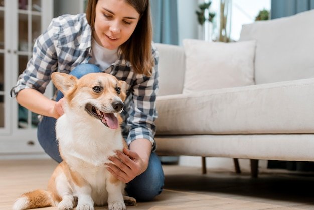 Ângulo baixo do cão sendo animal de estimação por mulher