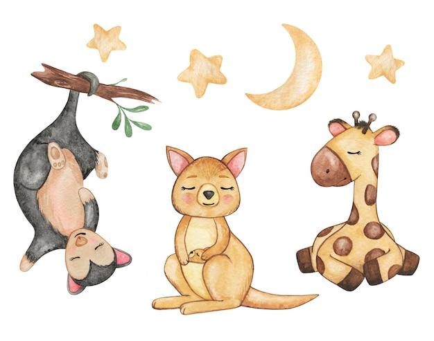 Animais fofos animais selvagens aquarela, girafa, canguru, gambá isolado, animais dormindo