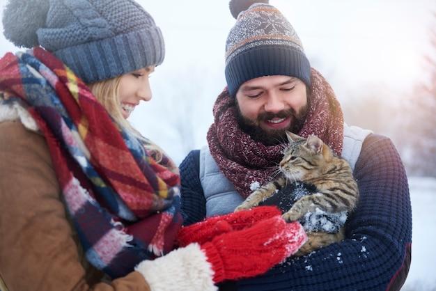 Animal de estimação fofo e fofo segurado por um jovem casal