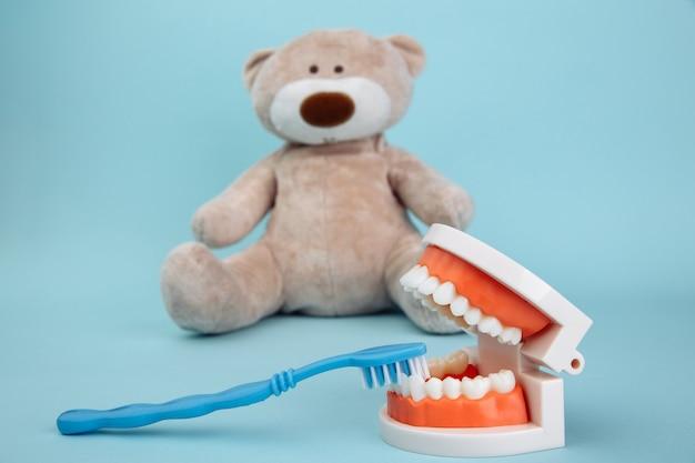 Animal de urso empalhado com escova de dentes isolada em azul